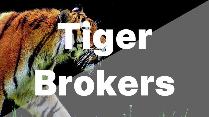 シンガポールで米国株投資ならTiger Brokersがおすすめ【実際に使用した感想】